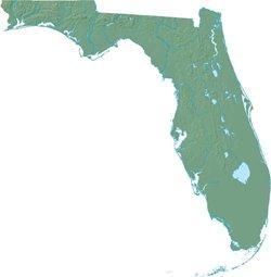 >Photo of Florida
